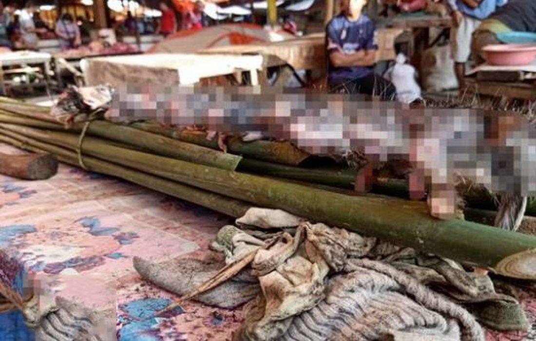 ماجرای ساختگی تولید سوسیس از گوشت سگ در مشهد چه بود؟