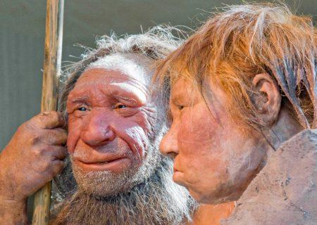 مروری بر اکتشافات باستانی سال ۲۰۲۰؛ اجداد ما چگونه زندگی میکردند؟